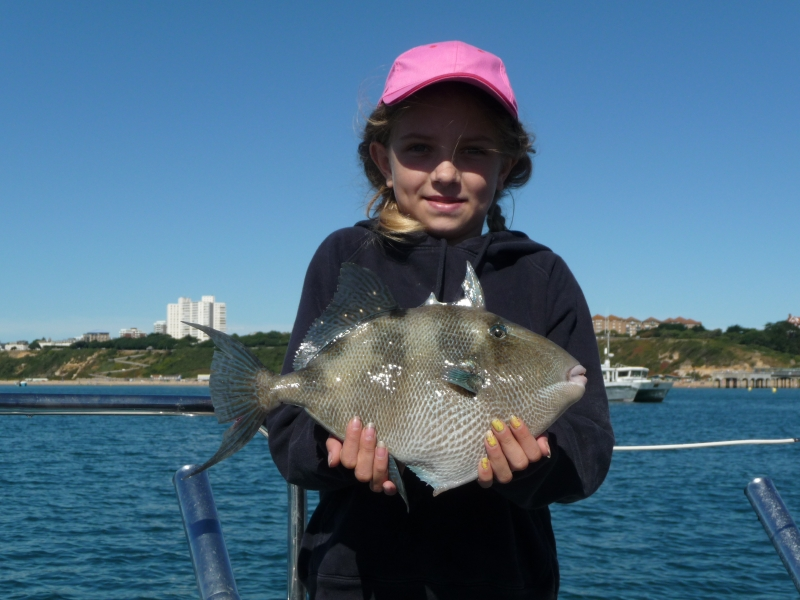 Lymington Junior boat angler Flora catches a trigger fish